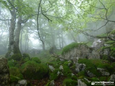 Urbasa-Andía;Aizkorri-Aratz;Aralar; singles de madrid ruta romanico palencia excursiones por almeri